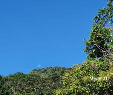 Calor del sol con mi dermatitis y urticaria Blog
