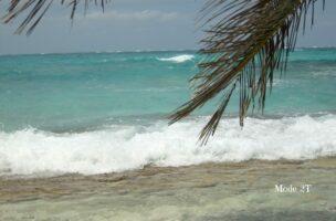 San Andrés un lugar que me enseñó mucho Blog